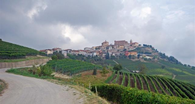 Hotel packages in Langhe